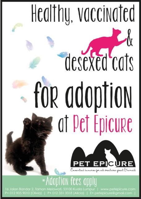Pet Epicure - adoption poster